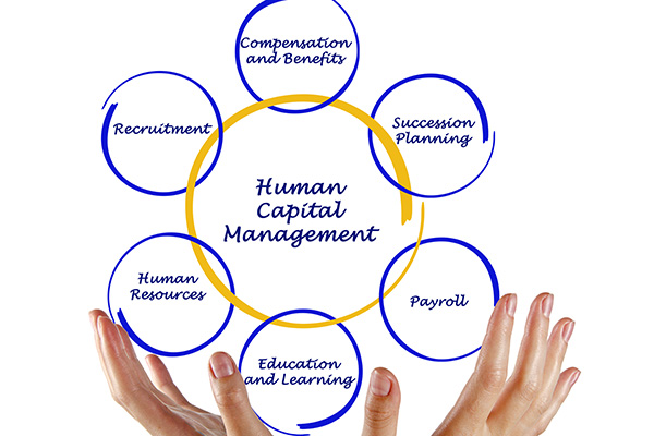 An infographic of hands showing human capital management